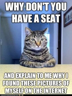 Cat Memes: Explain Why I Found My Pics on the Internets