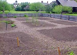 Preparing Yard for a Garden