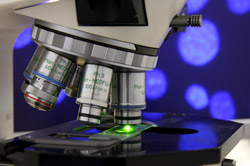 Personalized Medicine for Mesothelioma and All Cancer Patients May Be the Key