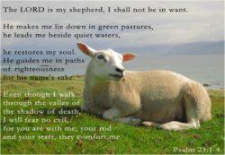 Psalm 23 | Lord is My Shepherd