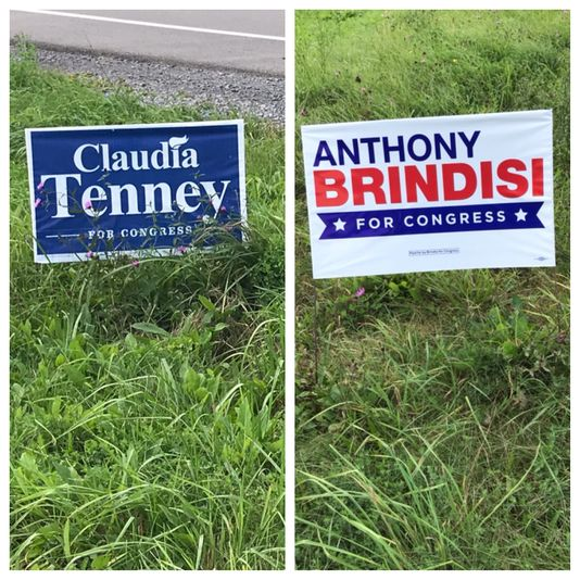 Claudia Tenney Leads Anthony Brindisi in NY 22nd Race by Slim Margin
